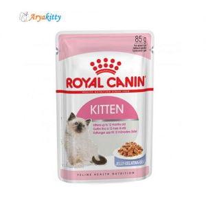 بچه گربه 4 تا 12 ماه در ژله 300x300 - گربه