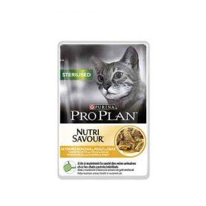 پوچ گربه عقیم شده پروپلن