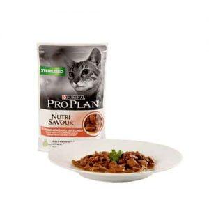 گربه عقیم شده پروپلن1 300x300 - پوچ گربه عقیم شده پروپلن