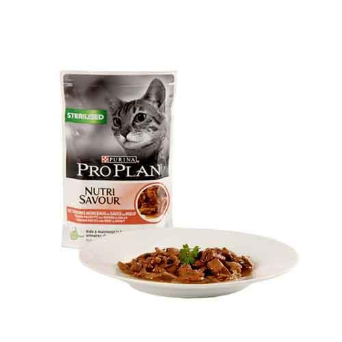 گربه عقیم شده پروپلن1 - پوچ گربه عقیم شده پروپلن