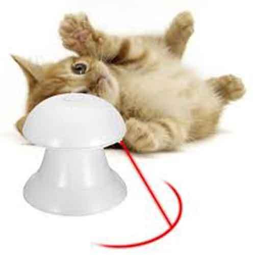 بازی گربه لیزر اتوماتیک5 - اسباب بازی گربه لیزر اتوماتیک