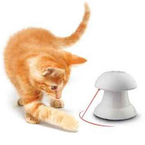 بازی گربه لیزر اتوماتیک6 - اسباب بازی گربه لیزر اتوماتیک