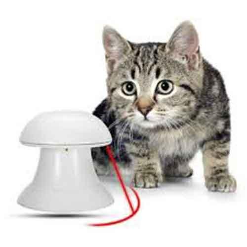 بازی گربه لیزر اتوماتیک7 - اسباب بازی گربه لیزر اتوماتیک
