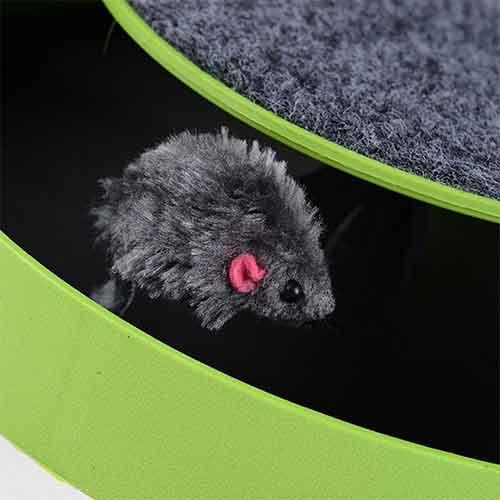 با موش چرخان8 - اسکرچ با موش چرخان