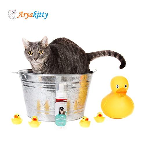 شامپو فوم بایولاین مخصوص سگ و گربه