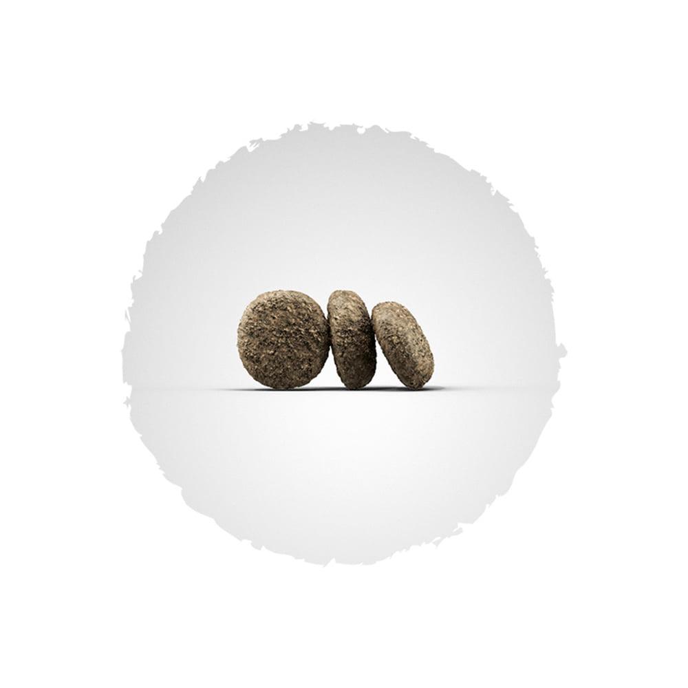 غذای خشک توله سگ نژاد کوچک جوسرا 1