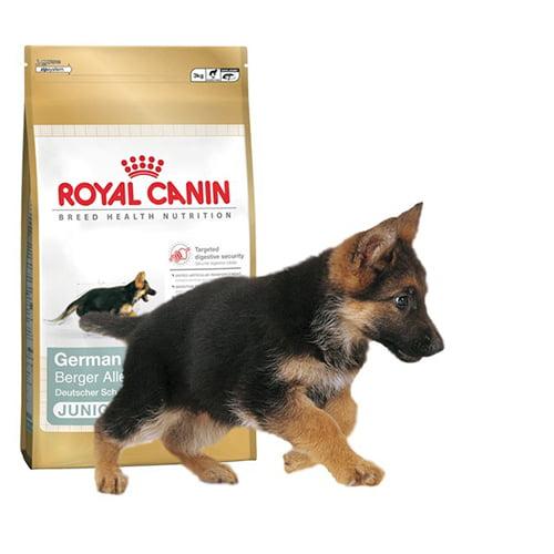 غذای خشک سگ نژاد ژرمن شپرد 2 - 15 ماه 2