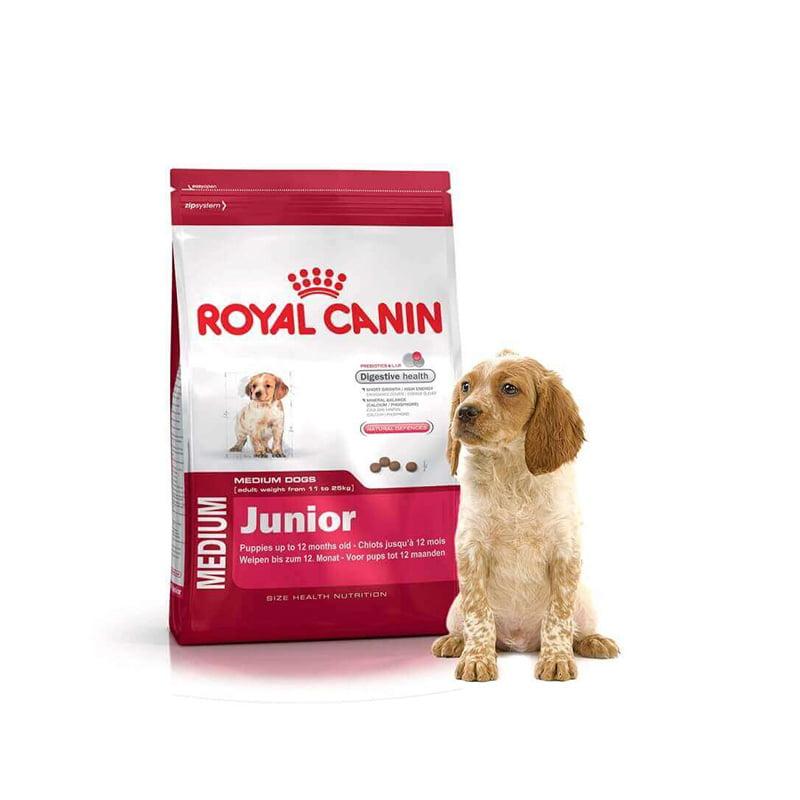 غذای سگ نژاد متوسط ۲ تا ۱۲ ماه رویال کنین 1