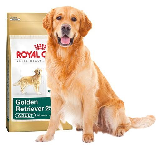 غذای خشک سگ نژاد گلدن رتریور بالای ۱۵ ماه 1