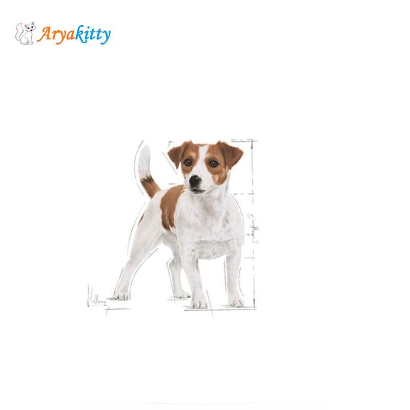 سگ نژاد کوچک بالای 10 ماه رویال کنین1 - غذای سگ نژاد کوچک بالای 10 ماه رویال کنین