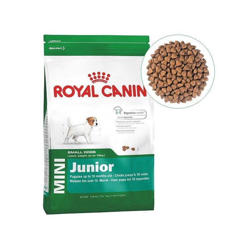 غذای سگ نژاد کوچک 2 تا 10 ماه رویال کنین 7