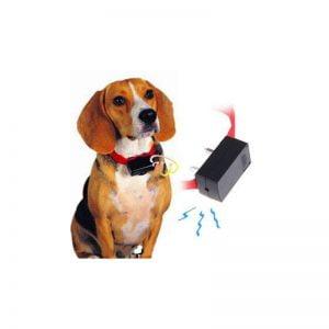 ضد پارس الکتریکی سگ1 300x300 - قلاده ضد پارس الکتریکی سگ