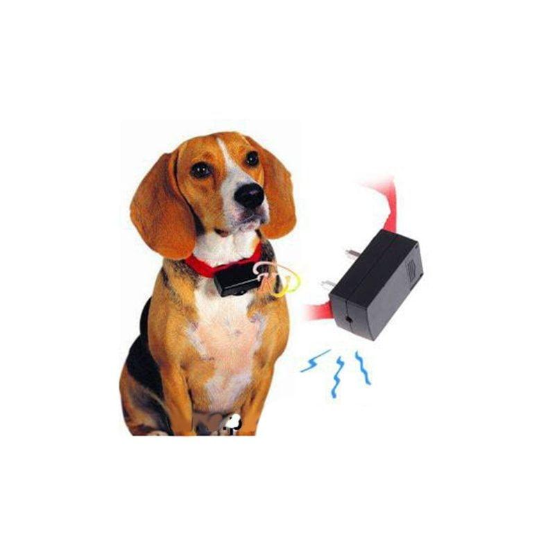 ضد پارس الکتریکی سگ1 800x800 - قلاده ضد پارس الکتریکی سگ