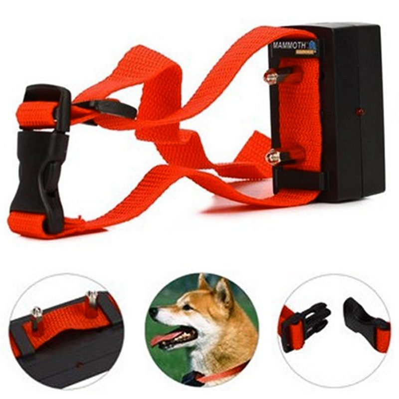 ضد پارس الکتریکی سگ3 800x800 - قلاده ضد پارس الکتریکی سگ