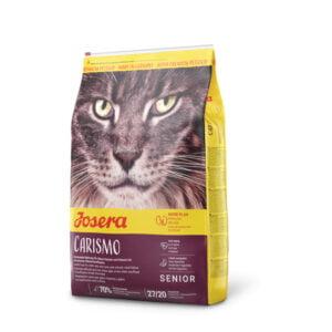 غذای گربه های مسن با مشکلات ادراری
