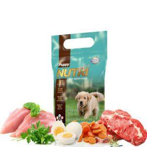غذای خشک توله سگ نوتری 1