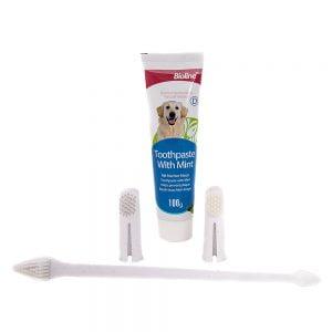 مسواک و خمیر دندان سگ Bioline 1 300x300 - سگ