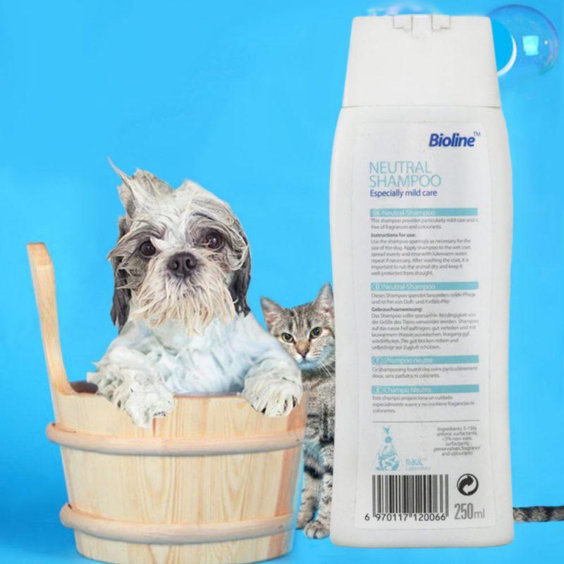 شامپو آنتی باکتریال مخصوص سگ Bioline 2