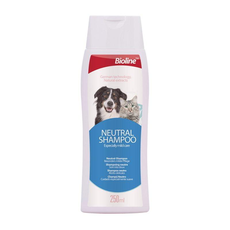 شامپو آنتی باکتریال مخصوص سگ Bioline
