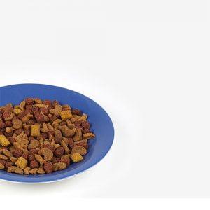 غذای گربه رافینه با طعم گوشت گاو بره و خرگوش