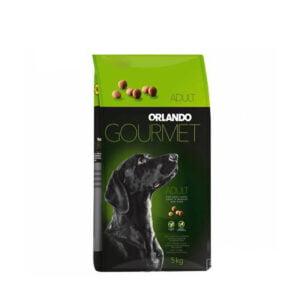 سگ اورلاندو با طعم مرغ 1 300x300 - گربه