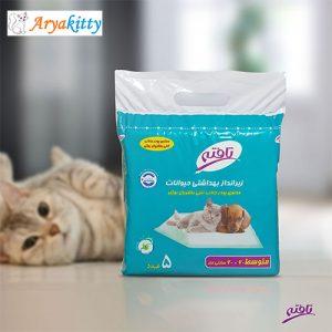 بهداشتی حیوانات 6060 300x300 - گربه