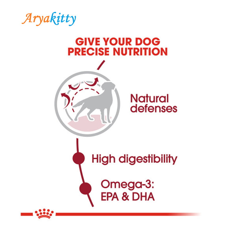 سگ بالغ نژاد متوسط رویال کنین3 - غذای سگ بالغ نژاد متوسط رویال کنین