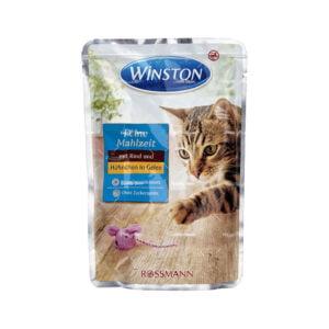 گربه وینستون گوشت و مرغ در ژلهq 300x300 - گربه
